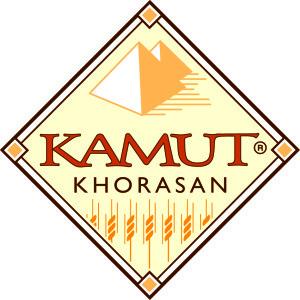 2009 Diamond Logo